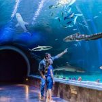 15 minutes to Loveland Living Planet Acquarium